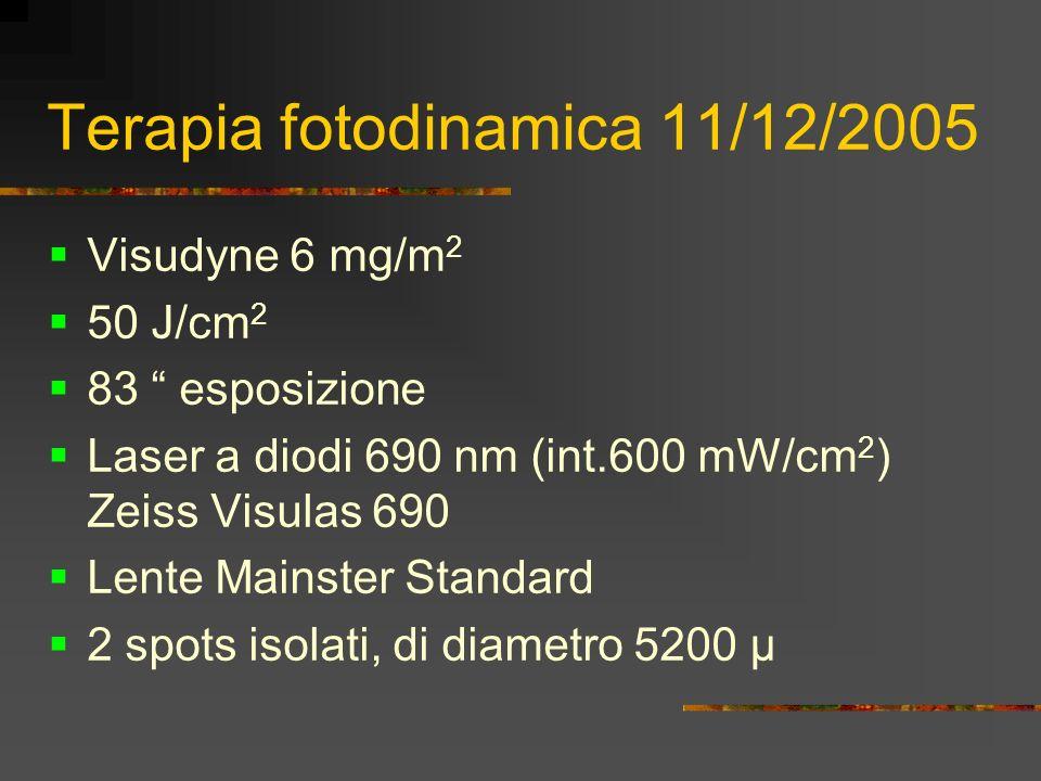 Terapia fotodinamica 11/12/2005