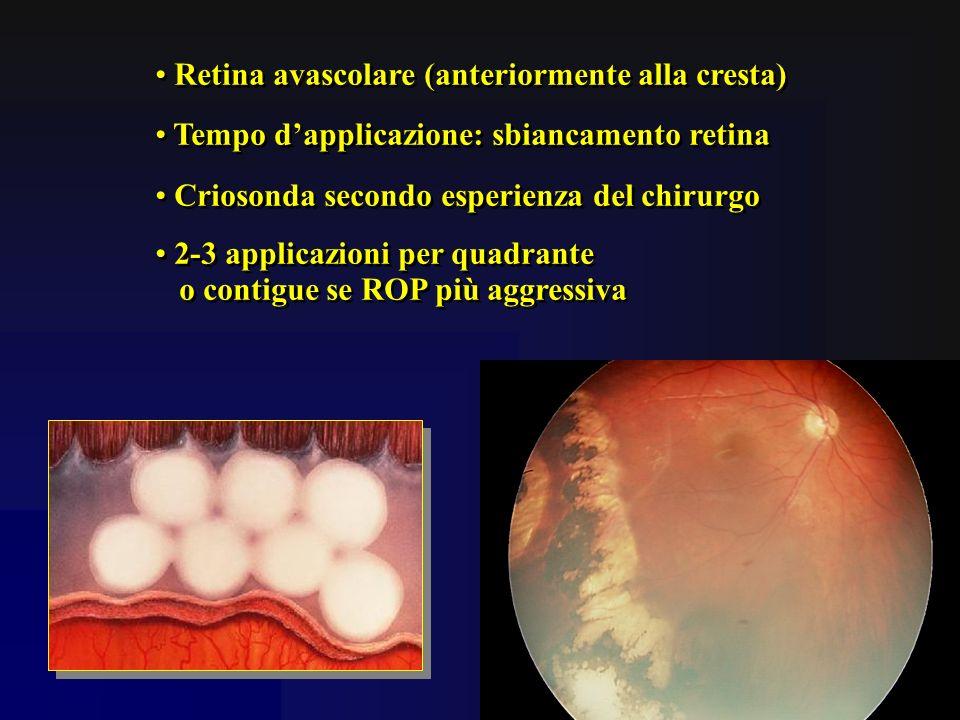 Retina avascolare (anteriormente alla cresta)