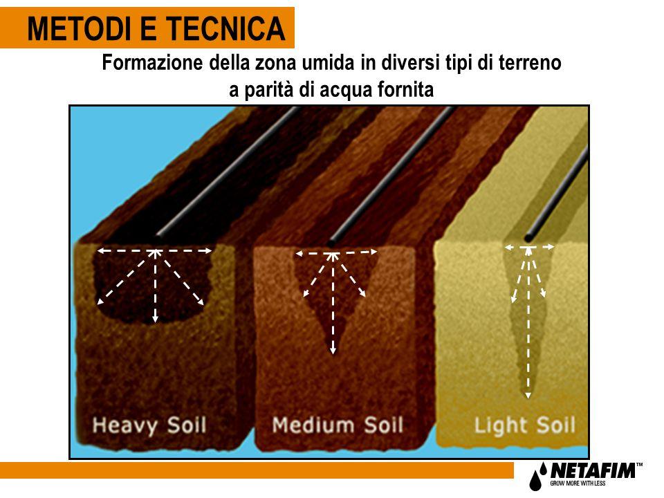 METODI E TECNICA Formazione della zona umida in diversi tipi di terreno a parità di acqua fornita.
