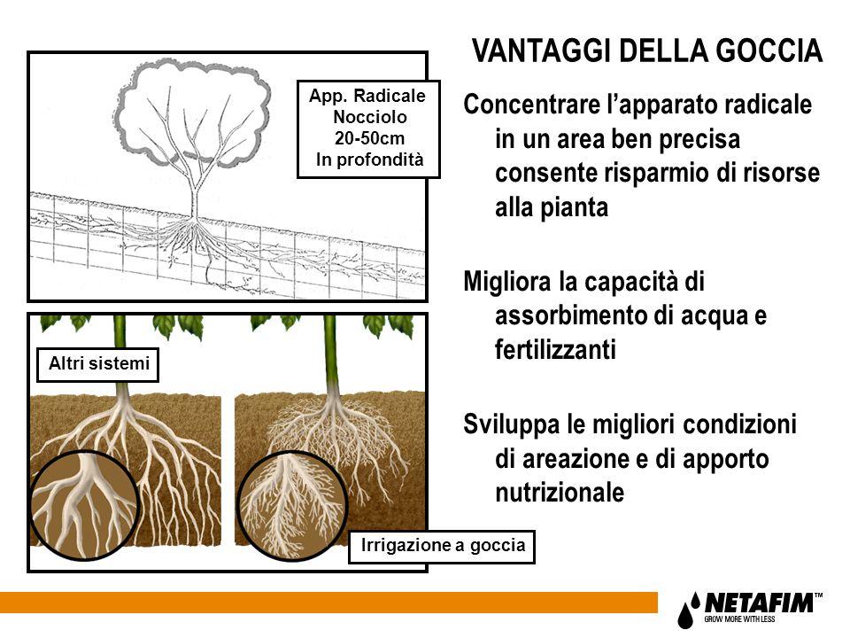 VANTAGGI DELLA GOCCIA App. Radicale. Nocciolo. 20-50cm. In profondità.