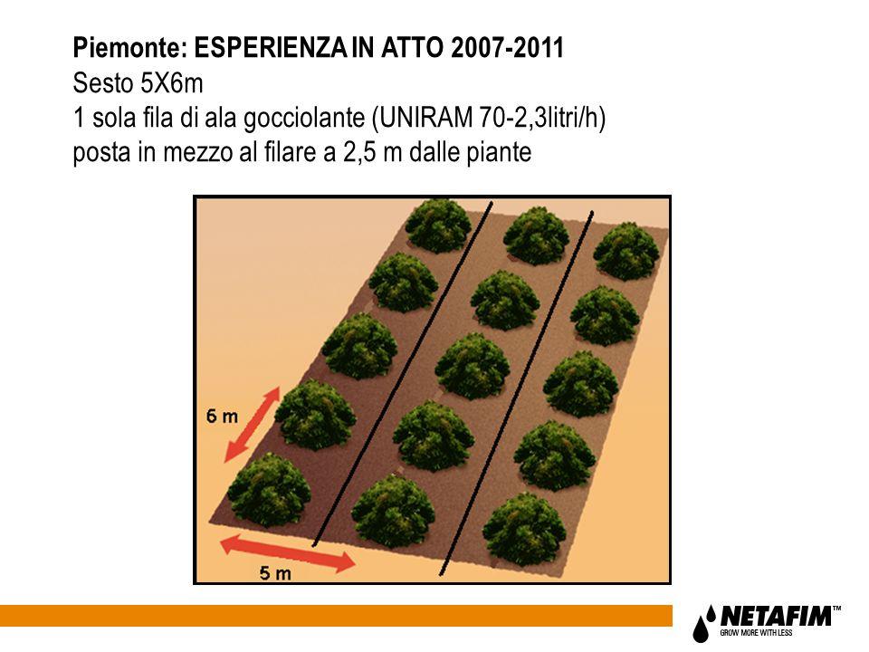 Piemonte: ESPERIENZA IN ATTO 2007-2011 Sesto 5X6m 1 sola fila di ala gocciolante (UNIRAM 70-2,3litri/h) posta in mezzo al filare a 2,5 m dalle piante