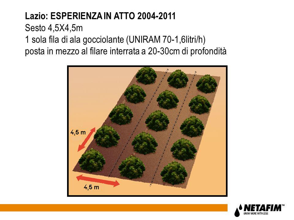 Lazio: ESPERIENZA IN ATTO 2004-2011 Sesto 4,5X4,5m 1 sola fila di ala gocciolante (UNIRAM 70-1,6litri/h) posta in mezzo al filare interrata a 20-30cm di profondità