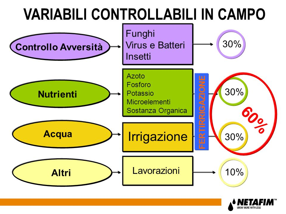 VARIABILI CONTROLLABILI IN CAMPO