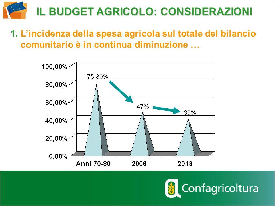 IL BUDGET AGRICOLO: CONSIDERAZIONI