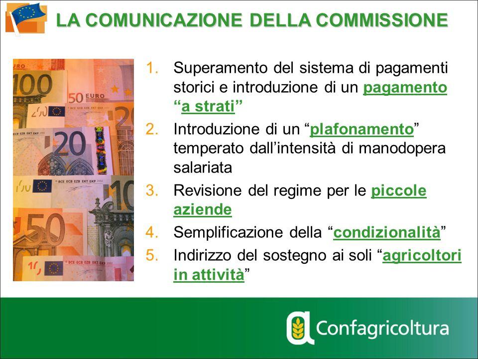 LA COMUNICAZIONE DELLA COMMISSIONE