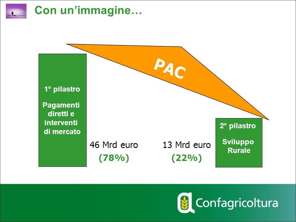 PAC Con un'immagine… 46 Mrd euro (78%) 13 Mrd euro (22%) 1° pilastro