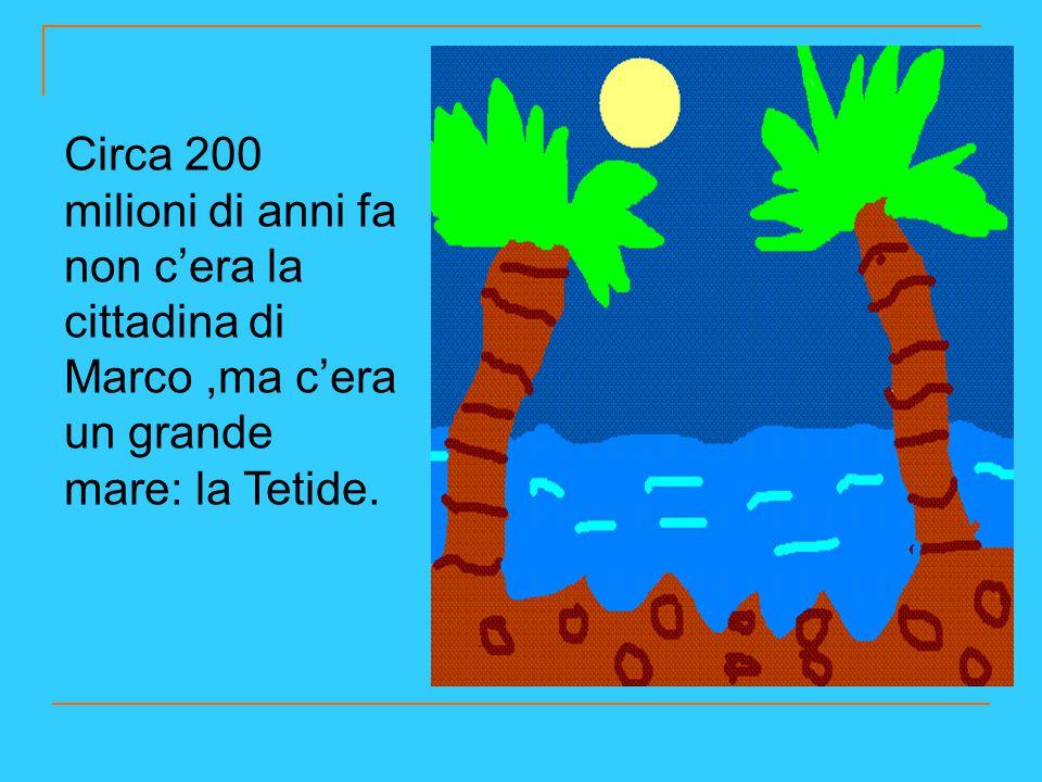 Circa 200 milioni di anni fa non c'era la cittadina di Marco ,ma c'era un grande mare: la Tetide.