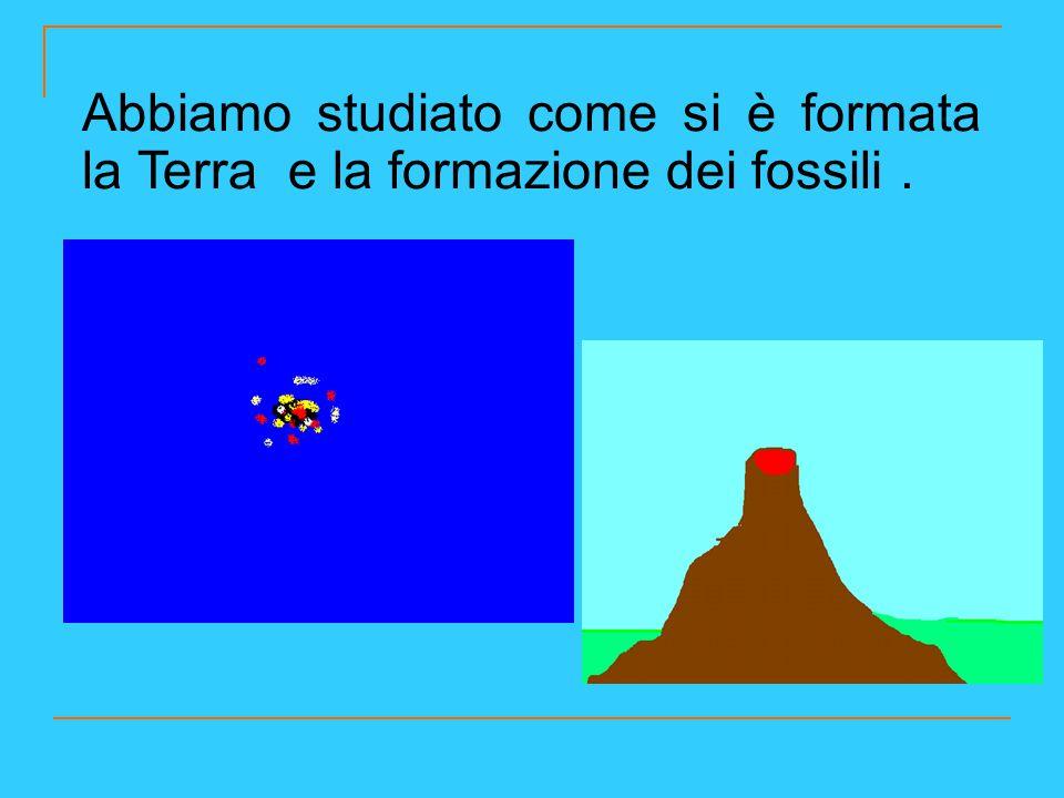 Abbiamo studiato come si è formata la Terra e la formazione dei fossili .