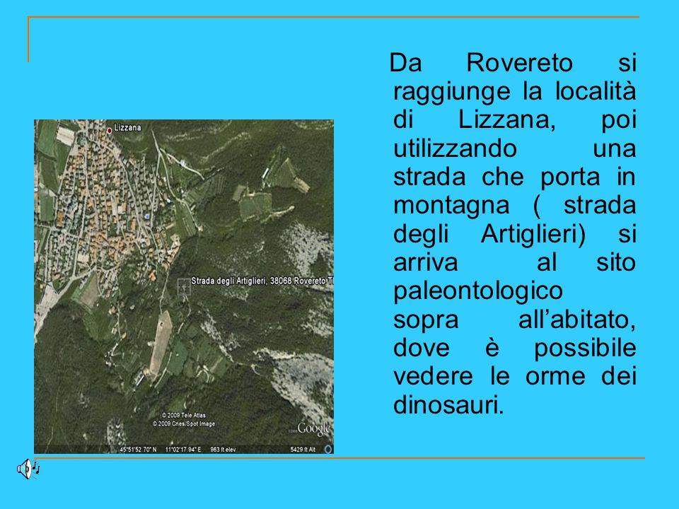Da Rovereto si raggiunge la località di Lizzana, poi utilizzando una strada che porta in montagna ( strada degli Artiglieri) si arriva al sito paleontologico sopra all'abitato, dove è possibile vedere le orme dei dinosauri.