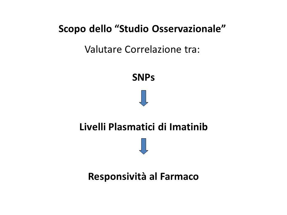 Livelli Plasmatici di Imatinib Responsività al Farmaco
