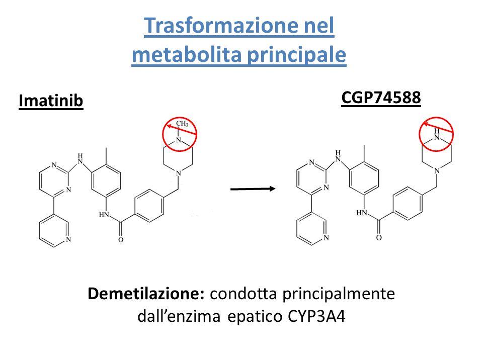 Trasformazione nel metabolita principale