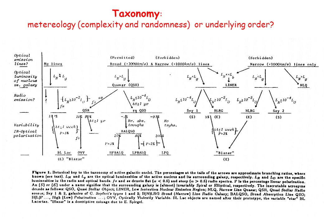 Taxonomy: metereology (complexity and randomness) or underlying order