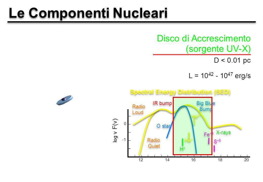 Le Componenti Nucleari