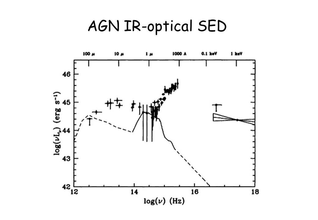 AGN IR-optical SED