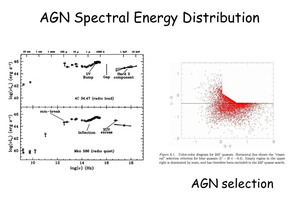 AGN Spectral Energy Distribution