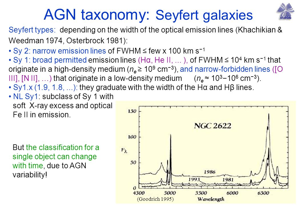 AGN taxonomy: Seyfert galaxies