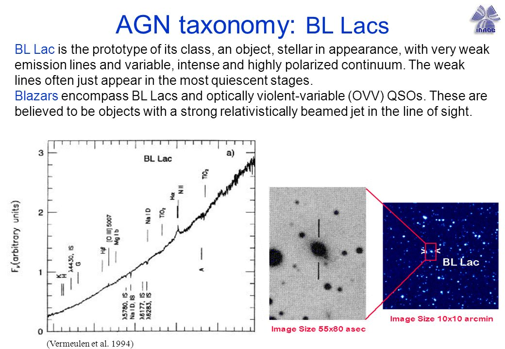 AGN taxonomy: BL Lacs