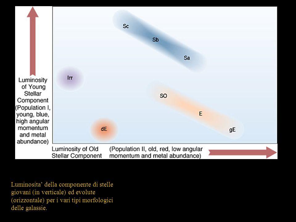Luminosita' della componente di stelle giovani (in verticale) ed evolute (orizzontale) per i vari tipi morfologici delle galassie.