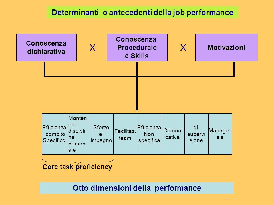 X X Determinanti o antecedenti della job performance