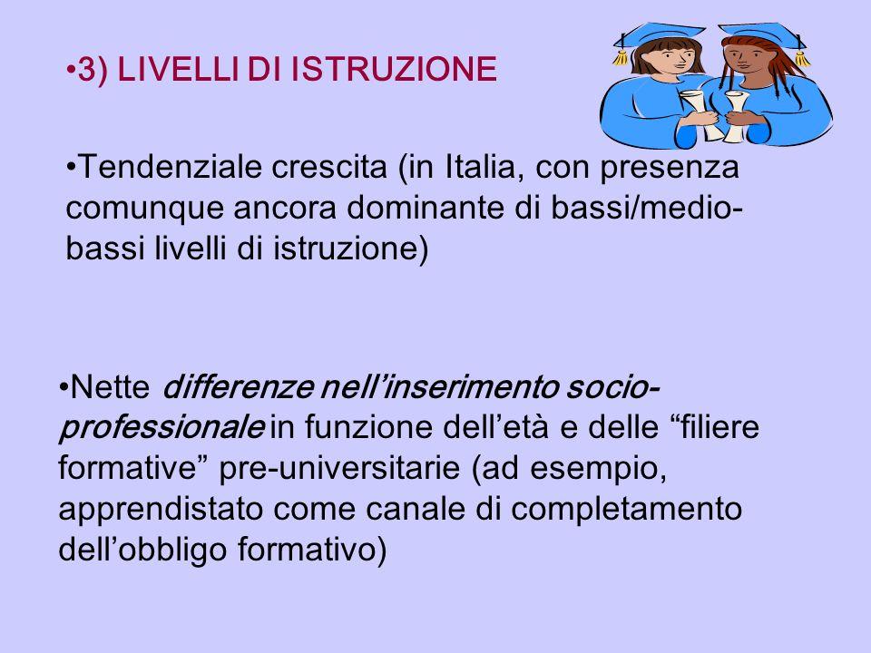 3) LIVELLI DI ISTRUZIONE