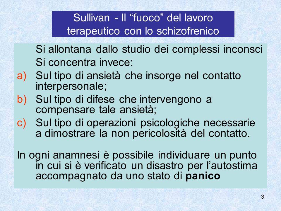 Sullivan - Il fuoco del lavoro terapeutico con lo schizofrenico