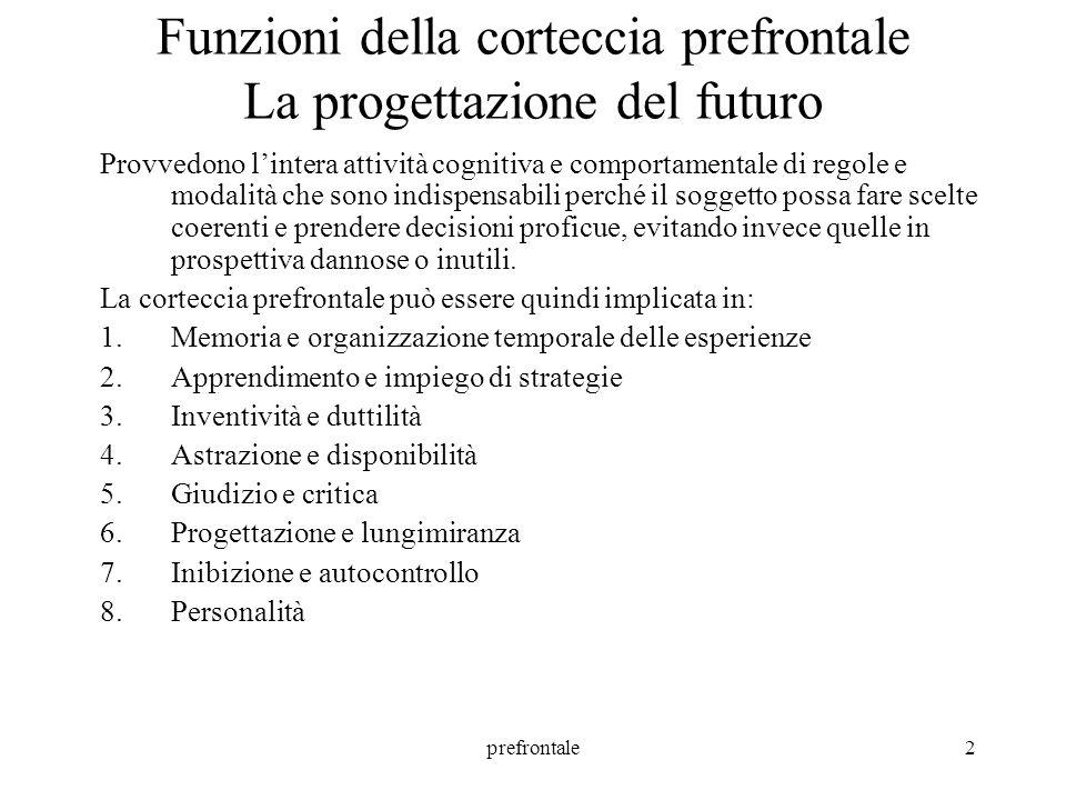Funzioni della corteccia prefrontale La progettazione del futuro