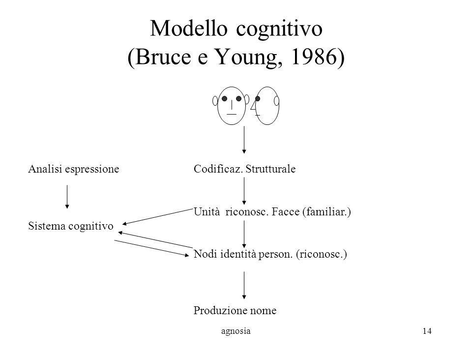 Modello cognitivo (Bruce e Young, 1986)