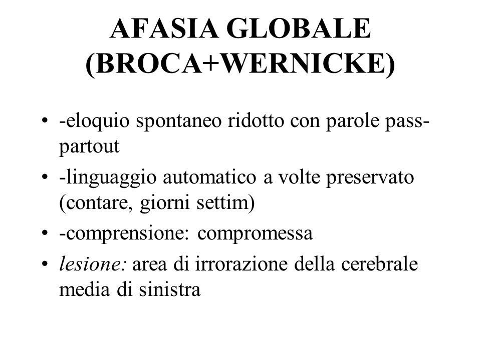 AFASIA GLOBALE (BROCA+WERNICKE)