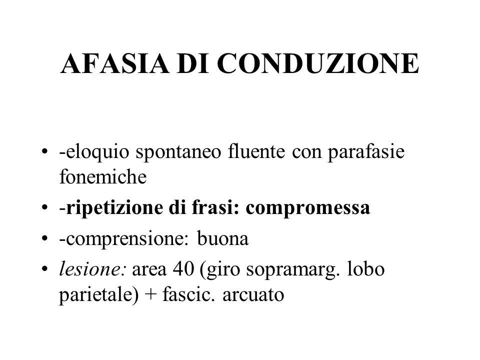 AFASIA DI CONDUZIONE -eloquio spontaneo fluente con parafasie fonemiche. -ripetizione di frasi: compromessa.