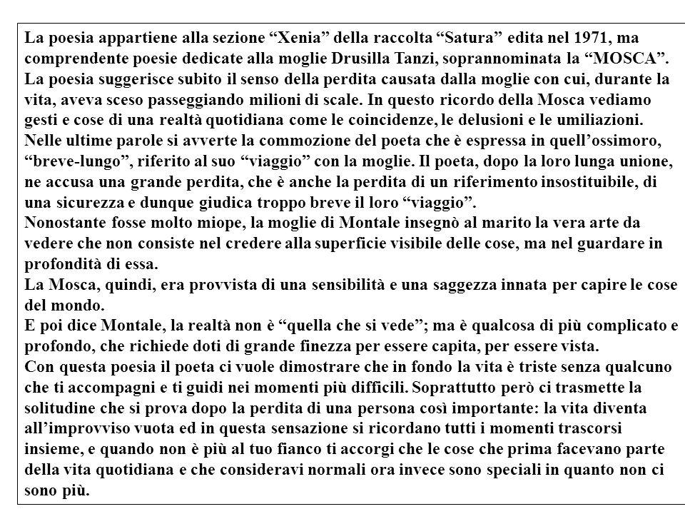 La poesia appartiene alla sezione Xenia della raccolta Satura edita nel 1971, ma comprendente poesie dedicate alla moglie Drusilla Tanzi, soprannominata la MOSCA .