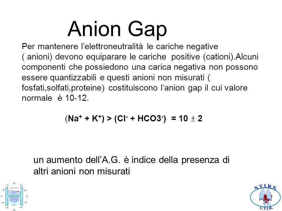 Anion Gap Per mantenere l'elettroneutralità le cariche negative ( anioni) devono equiparare le cariche positive (cationi).Alcuni componenti che possiedono una carica negativa non possono essere quantizzabili e questi anioni non misurati ( fosfati,solfati,proteine) costituiscono l'anion gap il cui valore normale è 10-12. (Na+ + K+) > (Cl- + HCO3-) = 10  2