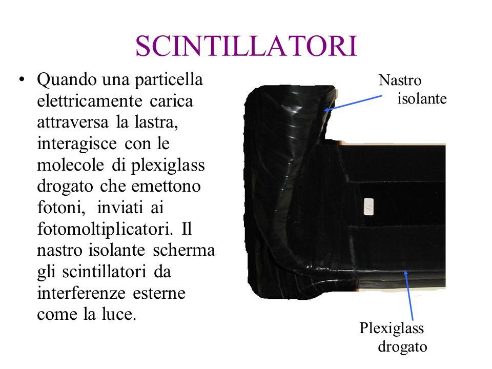 SCINTILLATORI