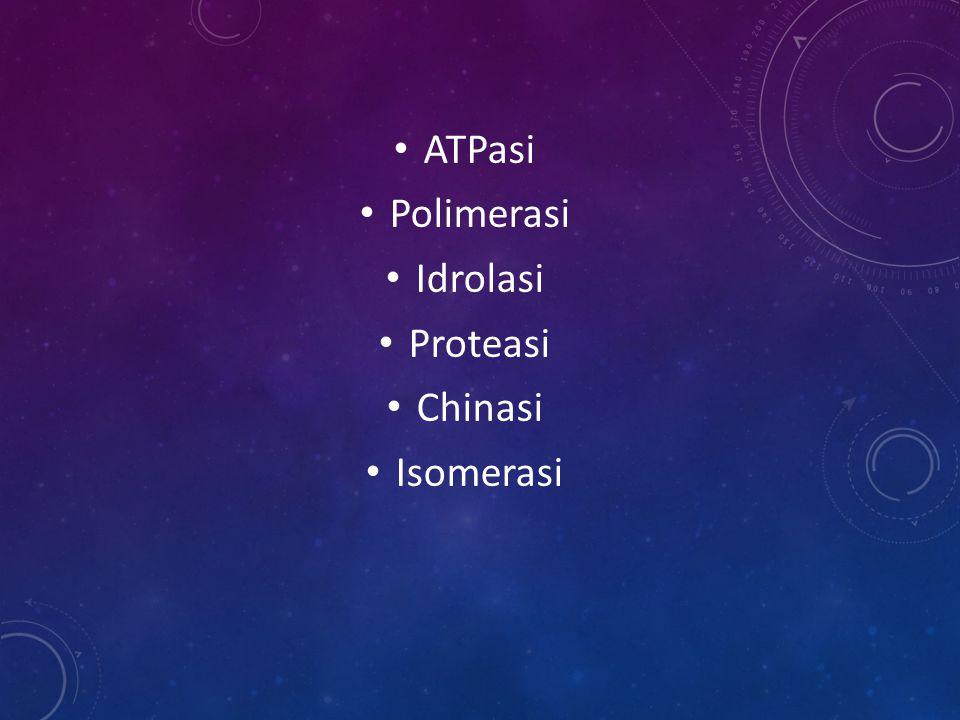 ATPasi Polimerasi Idrolasi Proteasi Chinasi Isomerasi