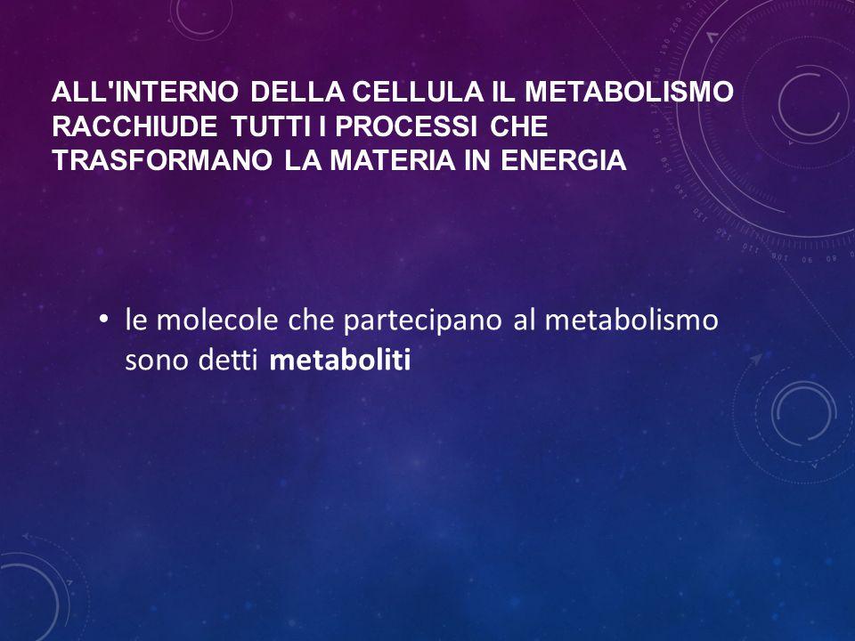 le molecole che partecipano al metabolismo sono detti metaboliti
