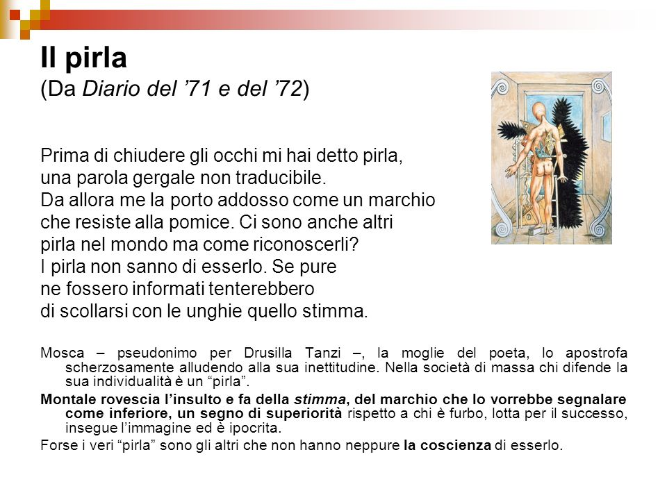 Il pirla (Da Diario del '71 e del '72)