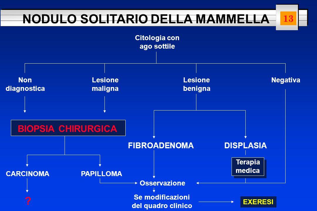 13 BIOPSIA CHIRURGICA FIBROADENOMA DISPLASIA Citologia con