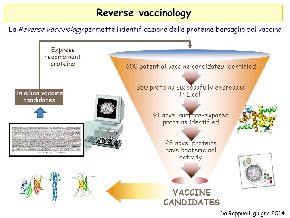Reverse vaccinology VACCINE CANDIDATES