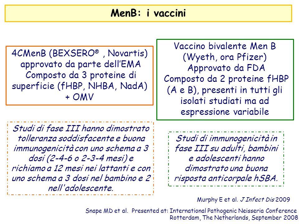 MenB: i vaccini Vaccino bivalente Men B (Wyeth, ora Pfizer)