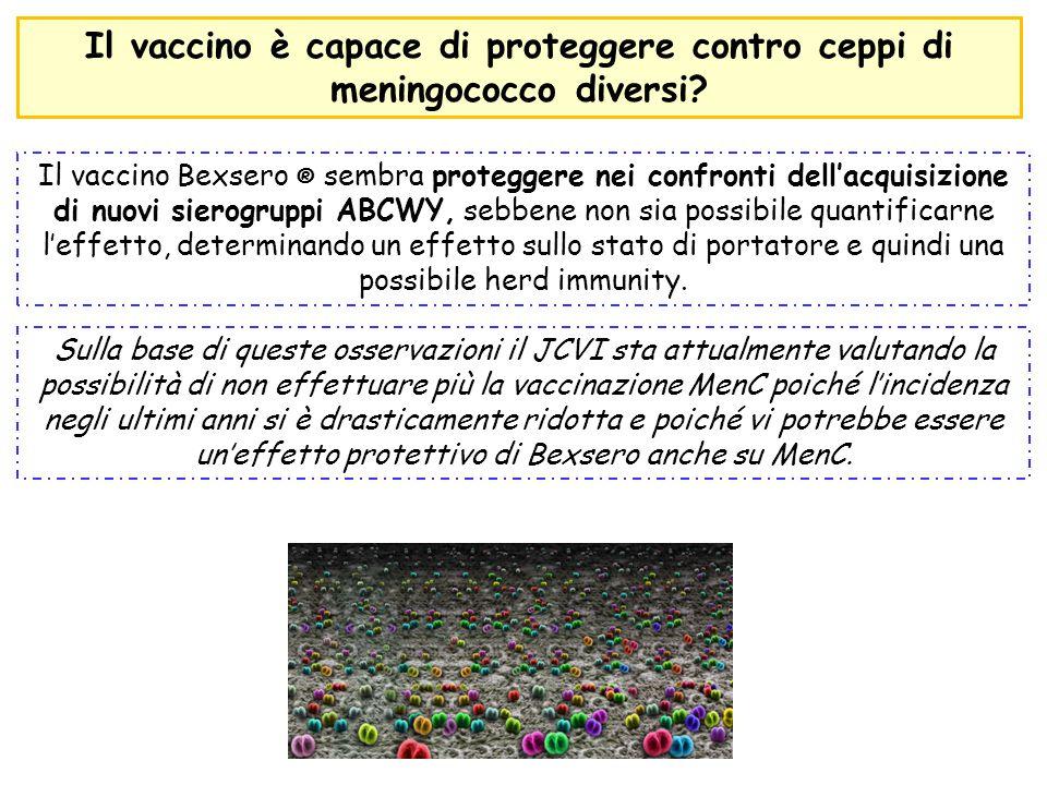 Il vaccino è capace di proteggere contro ceppi di meningococco diversi