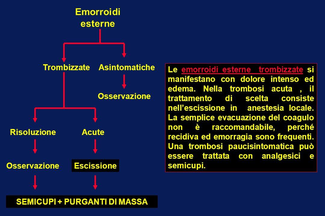 SEMICUPI + PURGANTI DI MASSA