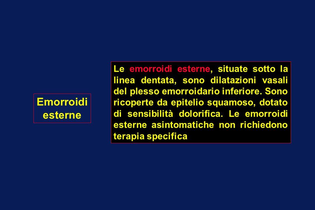 Le emorroidi esterne, situate sotto la linea dentata, sono dilatazioni vasali del plesso emorroidario inferiore. Sono ricoperte da epitelio squamoso, dotato di sensibilità dolorifica. Le emorroidi esterne asintomatiche non richiedono terapia specifica