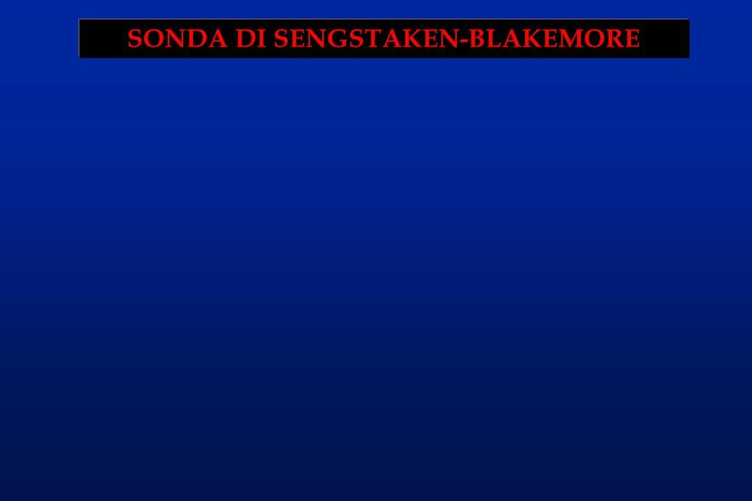 SONDA DI SENGSTAKEN-BLAKEMORE
