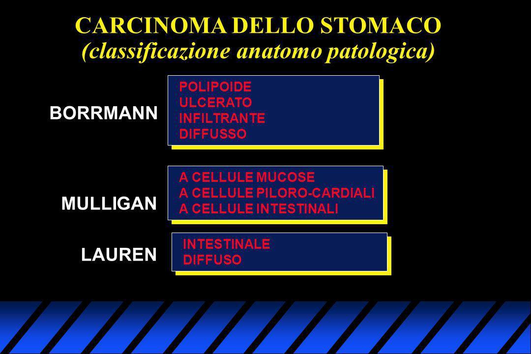 CARCINOMA DELLO STOMACO (classificazione anatomo patologica)