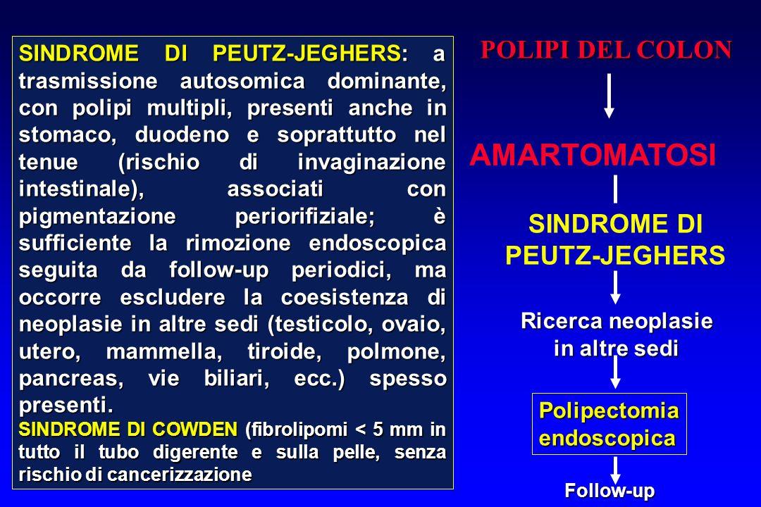 AMARTOMATOSI POLIPI DEL COLON SINDROME DI PEUTZ-JEGHERS