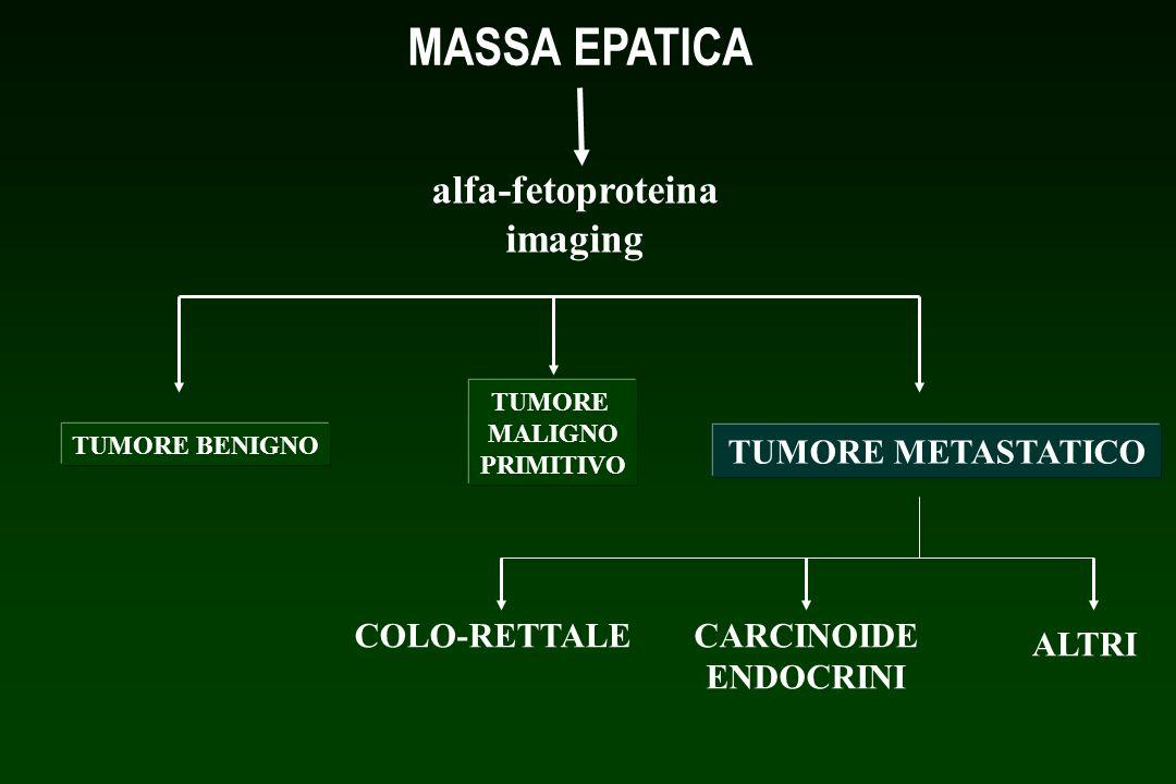 MASSA EPATICA alfa-fetoproteina imaging TUMORE METASTATICO