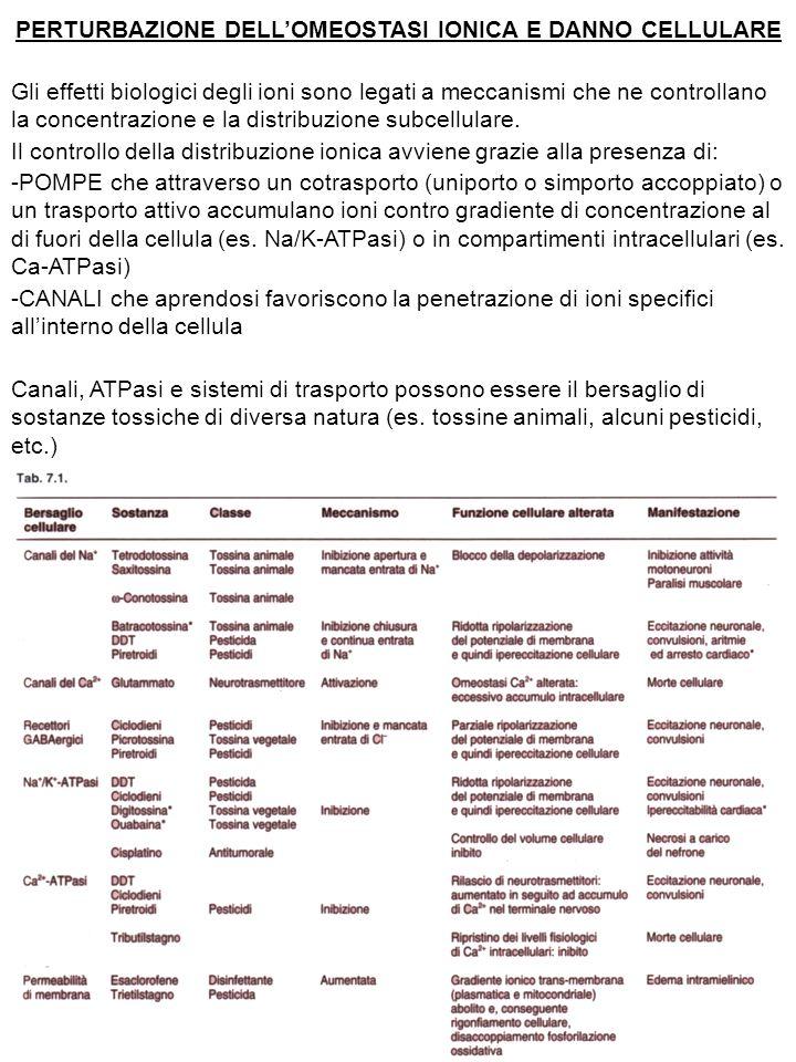 PERTURBAZIONE DELL'OMEOSTASI IONICA E DANNO CELLULARE