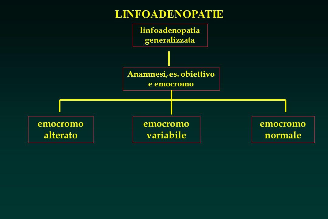 linfoadenopatia generalizzata Anamnesi, es. obiettivo e emocromo