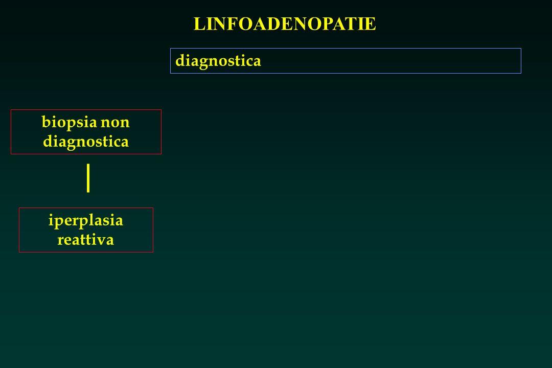 biopsia non diagnostica