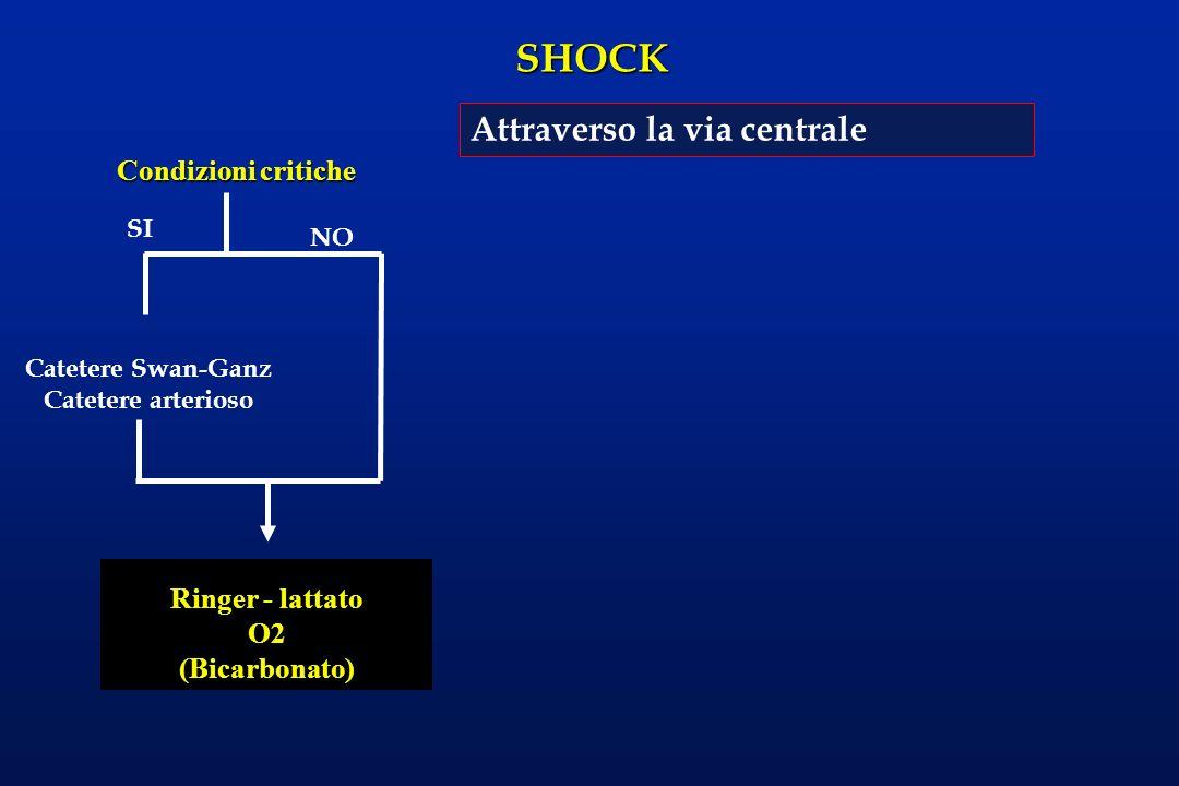 Catetere Swan-Ganz Catetere arterioso