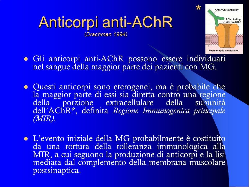 Anticorpi anti-AChR (Drachman 1994)
